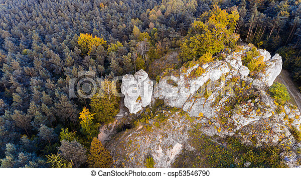 Forest and rocks in autumn aerial drone top view - csp53546790