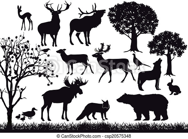 Line Drawing Vector Graphics : Forest and wildlife eps vector search clip art illustration