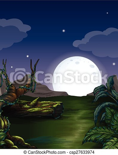 Forest at night - csp27633974