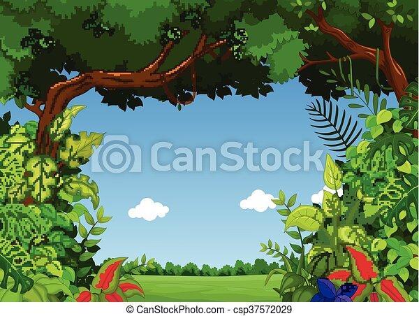 forest background - csp37572029