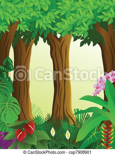 Forest background - csp7908901
