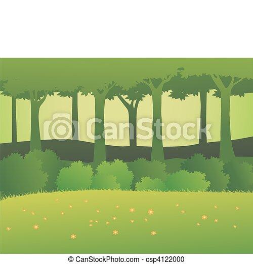 Forest background - csp4122000