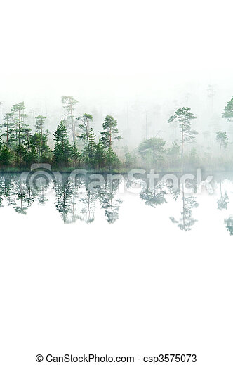 forest., do góry, odizolowany, powierzchnia, rano, lake., tajga, mgła, water., cichy, na dół - csp3575073