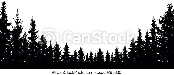 forest evergreen coniferous trees silhouette vector
