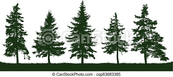 Christmas Trees Silhouette.Forest Fir Trees Silhouette Christmas Tree Coniferous Green Spruce Vector On White Background Isolated Objects Parkland Park Garden