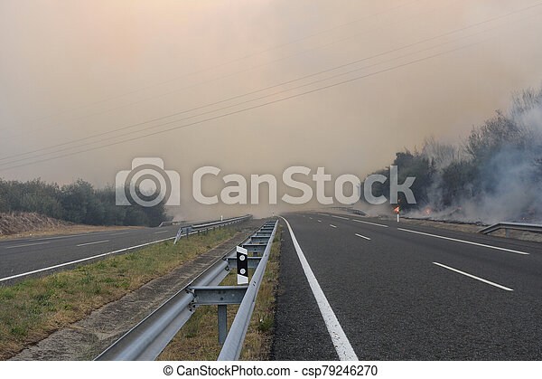 Forest fire on the road - csp79246270