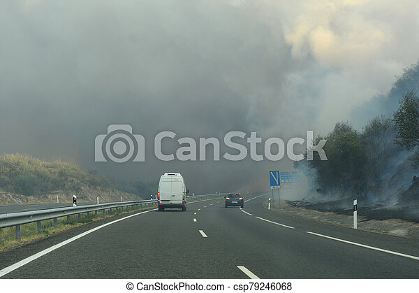 Forest fire on the road - csp79246068