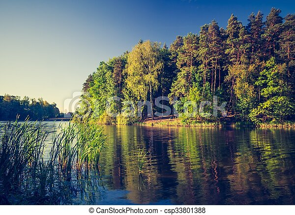 Una foto antigua del paisaje del lago con bosque. - csp33801388