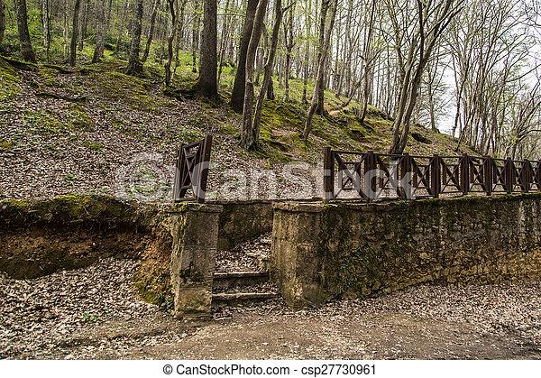 Forest in Autumn - csp27730961