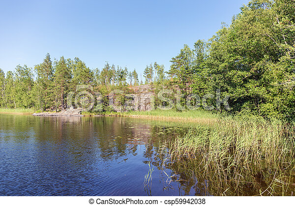 forest lake in a sunny summer day - csp59942038