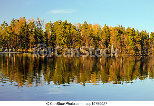 Forest lake reflections - csp19759927