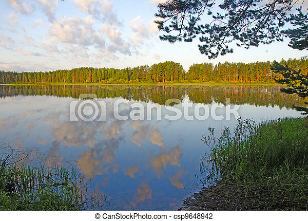 Forest lake - csp9648942