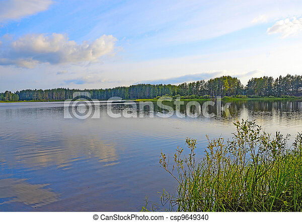 Forest lake - csp9649340