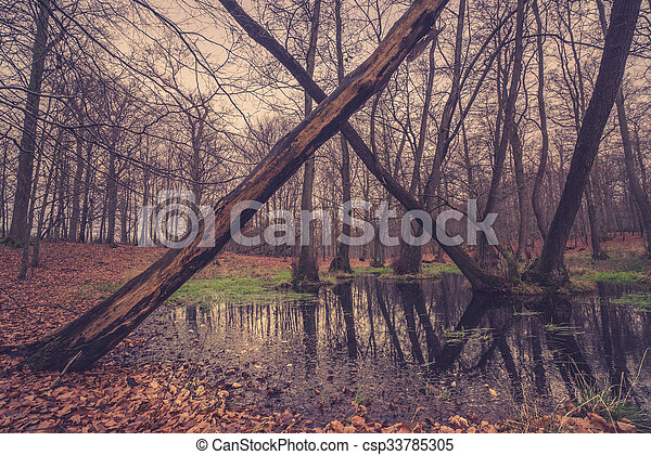 Forest lake with a cross of trees - csp33785305
