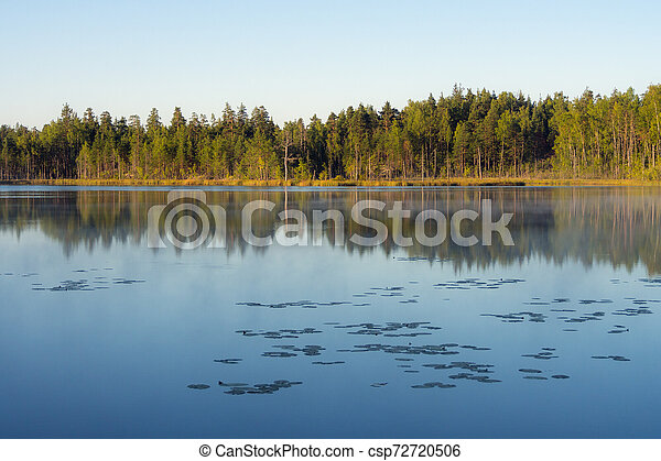 forest lake with reflections - csp72720506