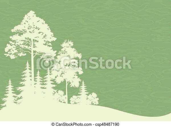 Forest Landscape - csp48487190