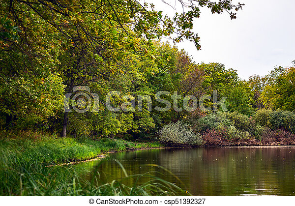 Forest landscape with a lake. - csp51392327