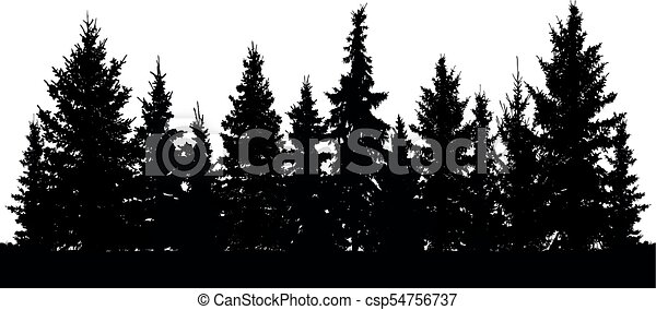 Forest Of Christmas Fir Trees Silhouette Coniferous