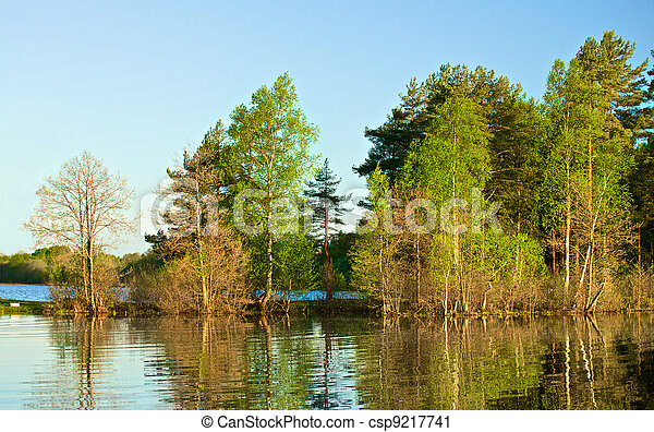 Forest on a Lake - csp9217741