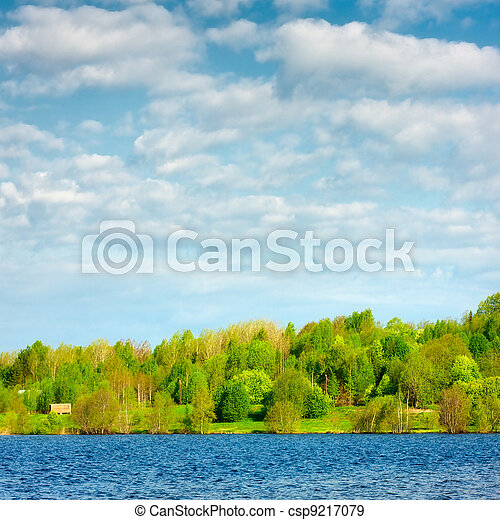 Forest on a Lake - csp9217079