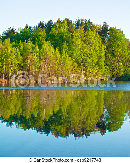 Forest on a Lake - csp9217743