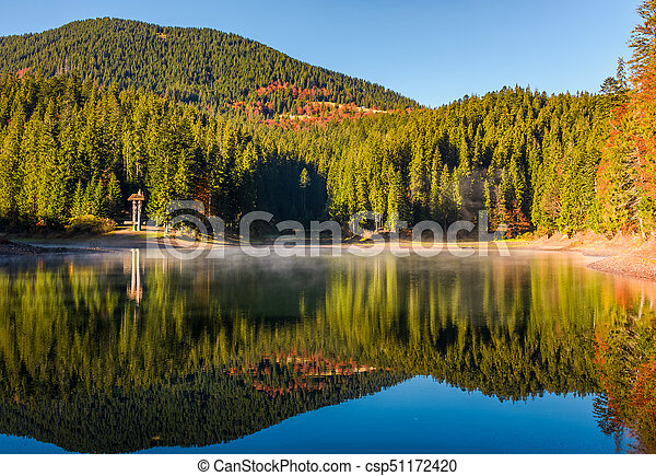 forest reflection on foggy surface of Synevyr lake - csp51172420