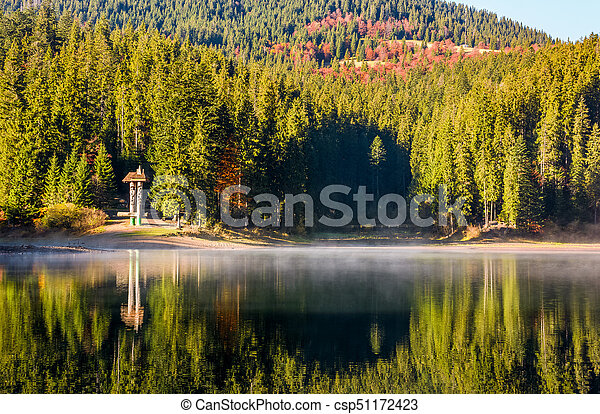 forest reflection on foggy surface of Synevyr lake - csp51172423
