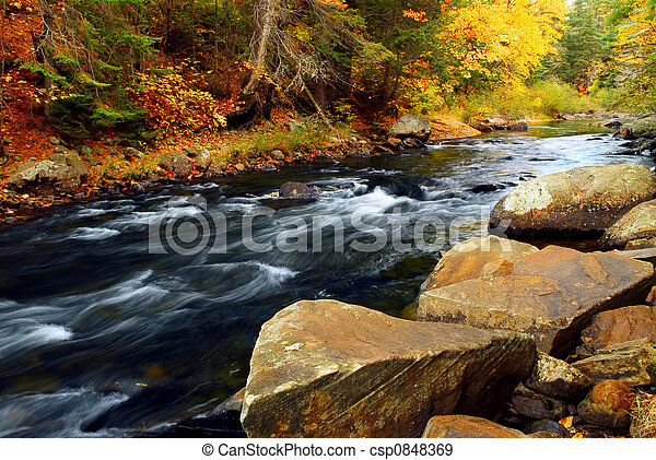 Forest river in the fall - csp0848369