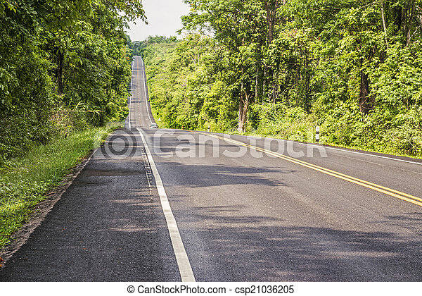 Forest road in high mountain. - csp21036205