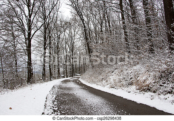 Forest road in winter - csp26298438
