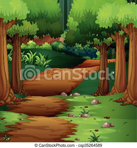 Forest scene with dirt road in the middle - csp35264589