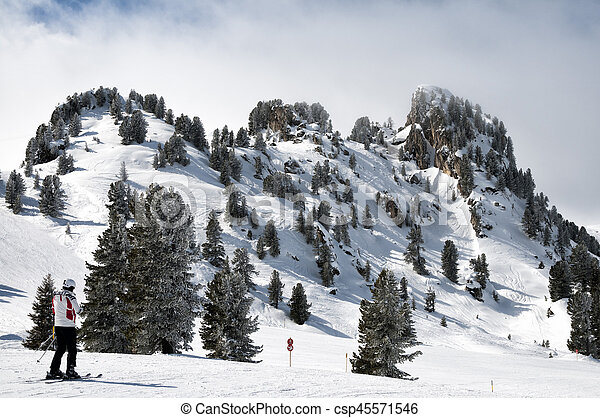Forest skiing country in Mayrhofen-Hippach, Zillertal - csp45571546