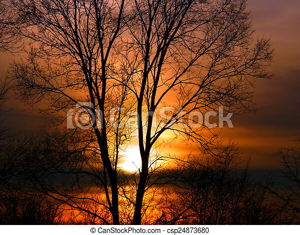 Forest Sunset Landscape Illinois - csp24873680