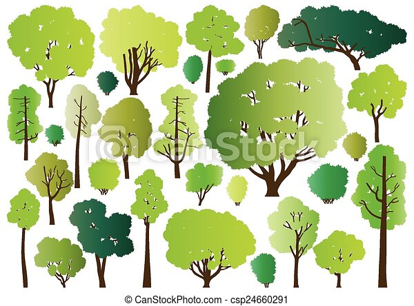 Forest trees silhouettes - csp24660291