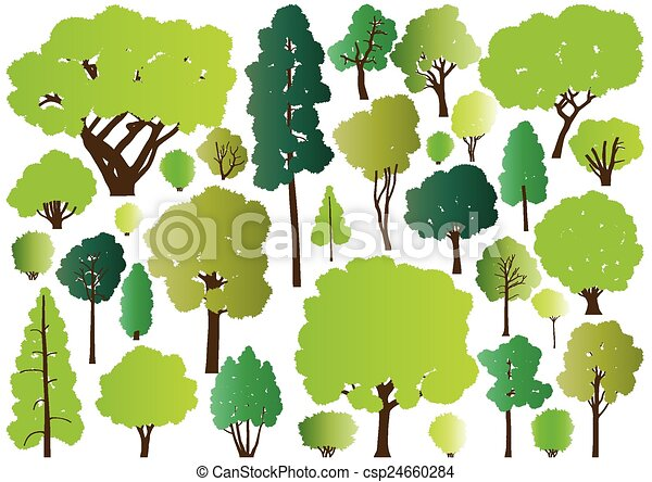 Forest trees silhouettes - csp24660284