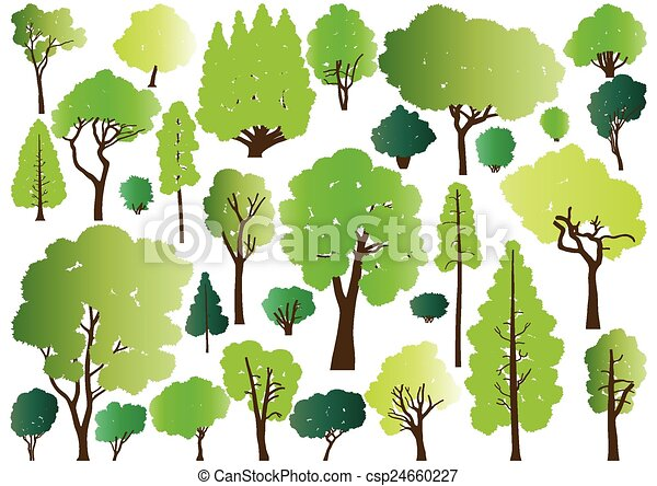 Forest trees silhouettes - csp24660227