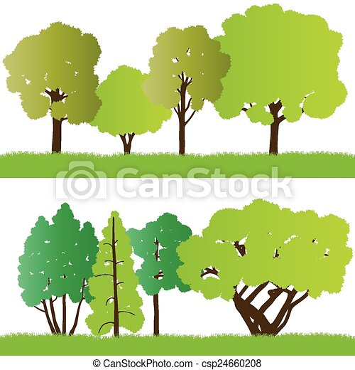 Forest trees silhouettes - csp24660208