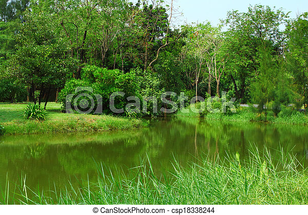 Forest with lake - csp18338244