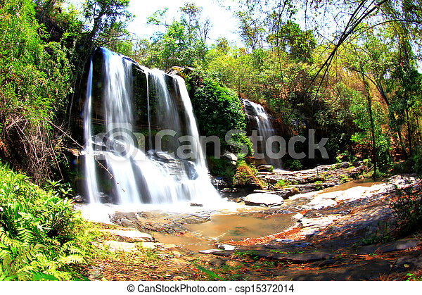 forest with waterfall - csp15372014