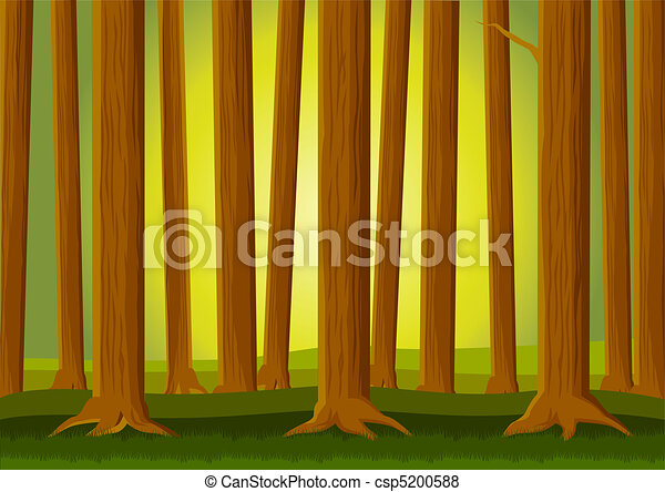 foresta, fondo - csp5200588
