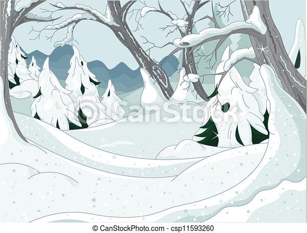 foresta, inverno - csp11593260