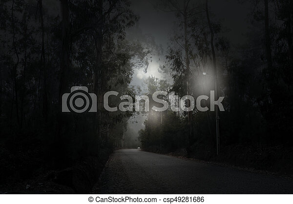 foresta, luna piena, strada, notte - csp49281686