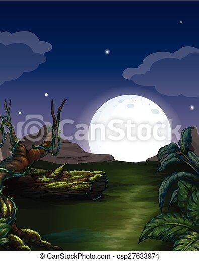 foresta, notte - csp27633974