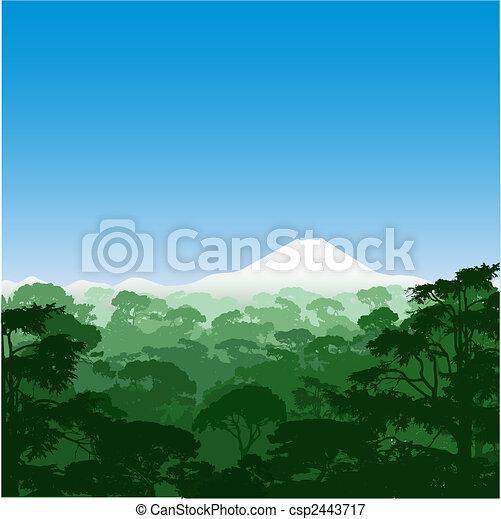 foresta, paesaggio - csp2443717