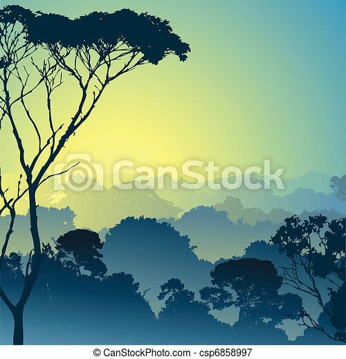 foresta, paesaggio - csp6858997