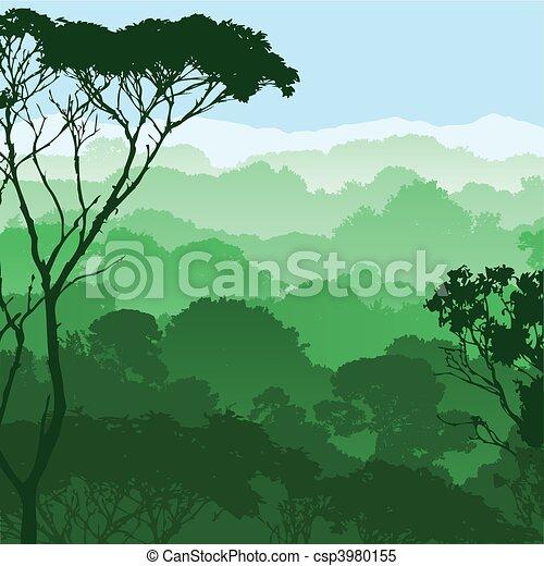 foresta, paesaggio - csp3980155