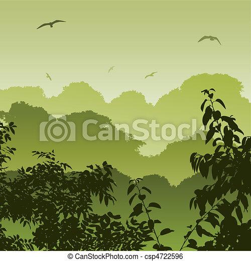 foresta, paesaggio - csp4722596