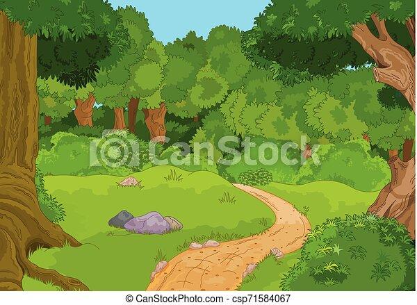 foresta, paesaggio - csp71584067