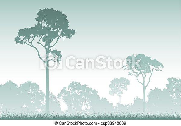 foresta, paesaggio - csp33948889