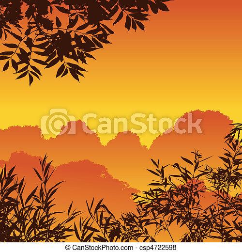 foresta, paesaggio - csp4722598